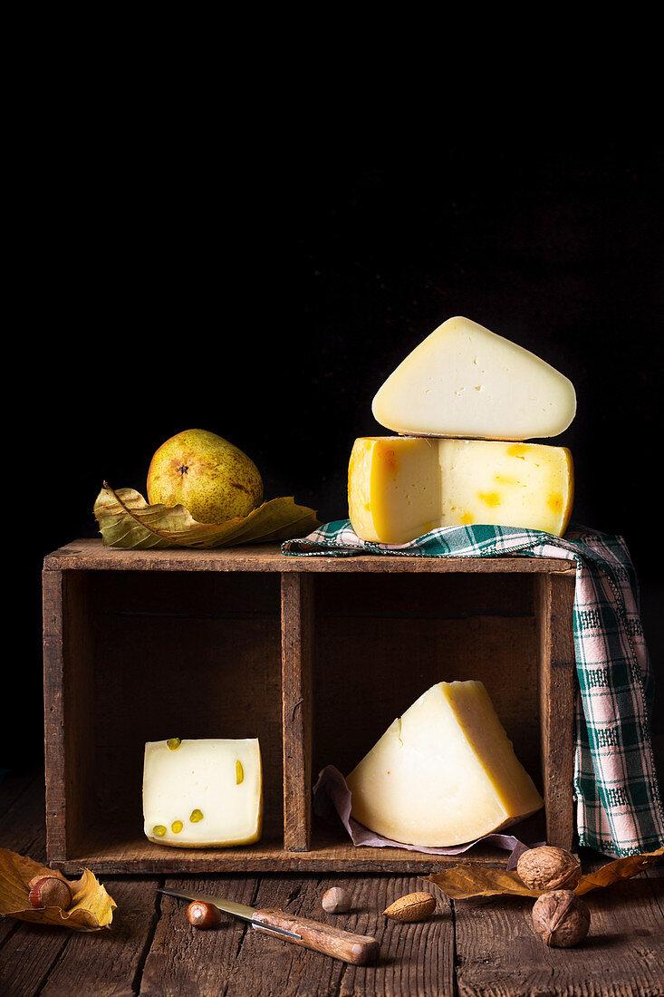 Selection of pecorino cheeses (still life)