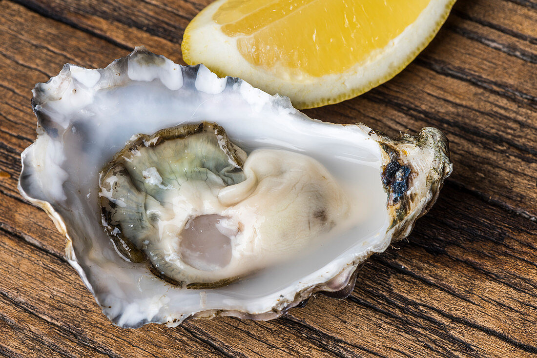 A fresh oyster with a lemon slice