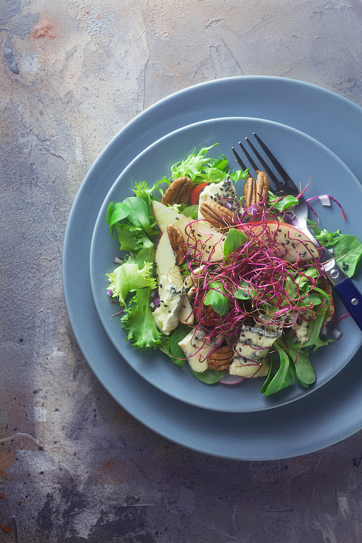 Mixed leaf salad with blue cheese, apple and beetroot sprouts