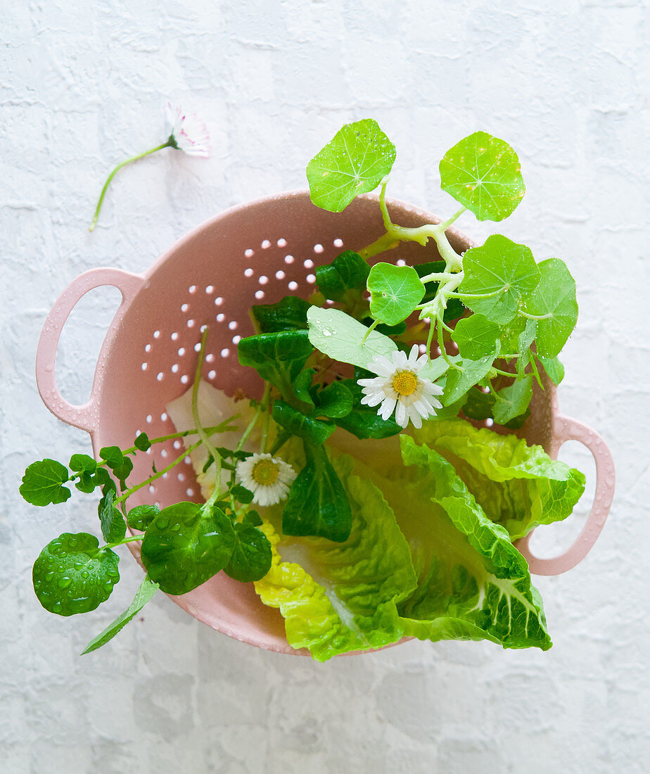 A salad mix with flowers in a colander