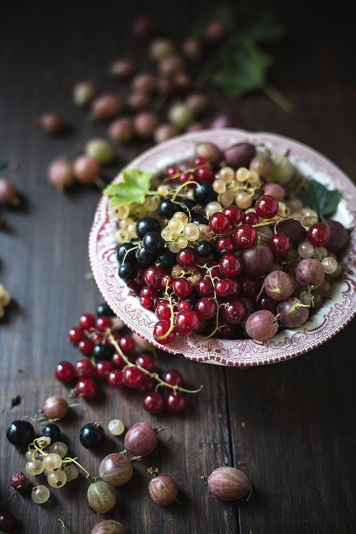 An arrangement of gooseberries and various redcurrants