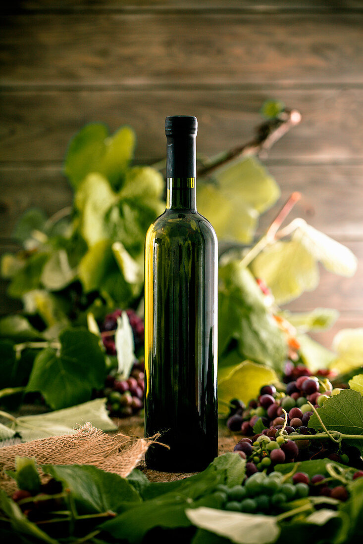 A bottle of white wine on a wooden background