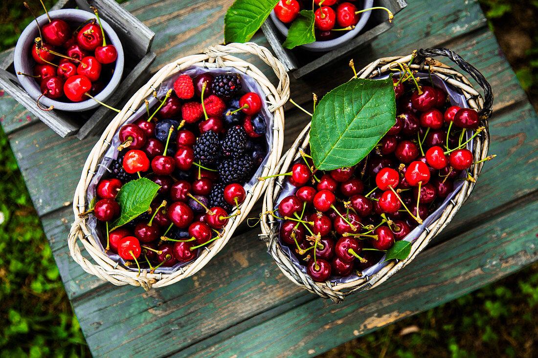 Frische Bio-Kirschen, Blaubeeren und Brombeeren in Körben auf Holztisch