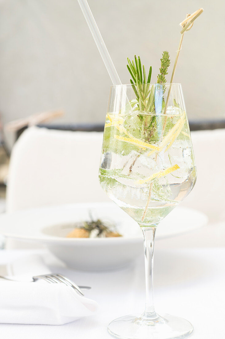 Gin Tonic with herbs