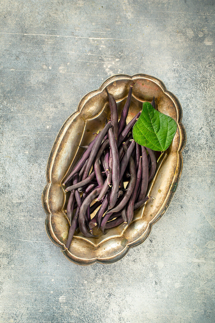 Purple bean pods in tray top view