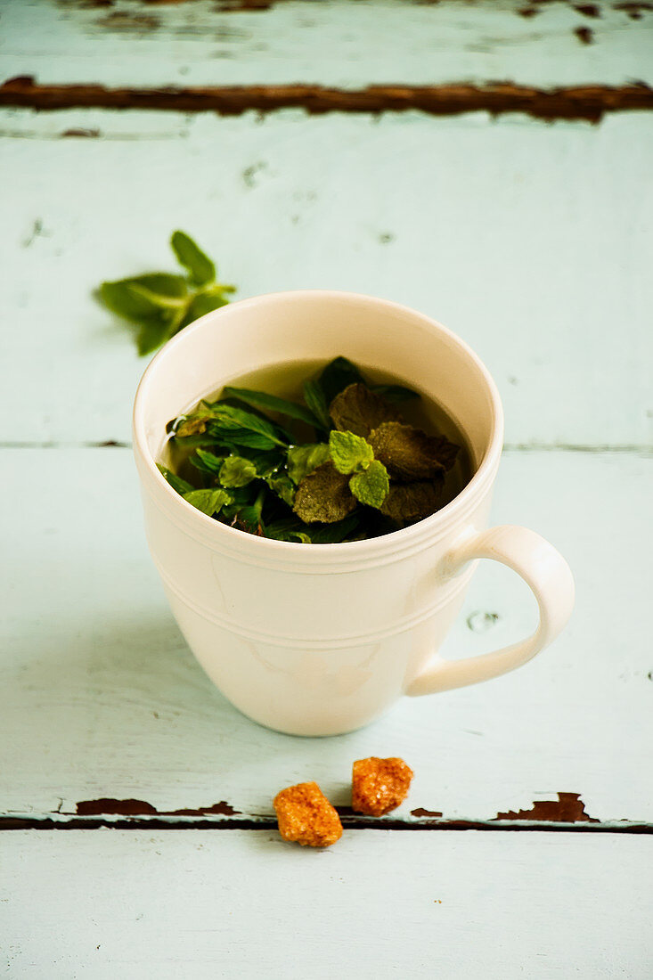 Mint tea composition on turquoise background