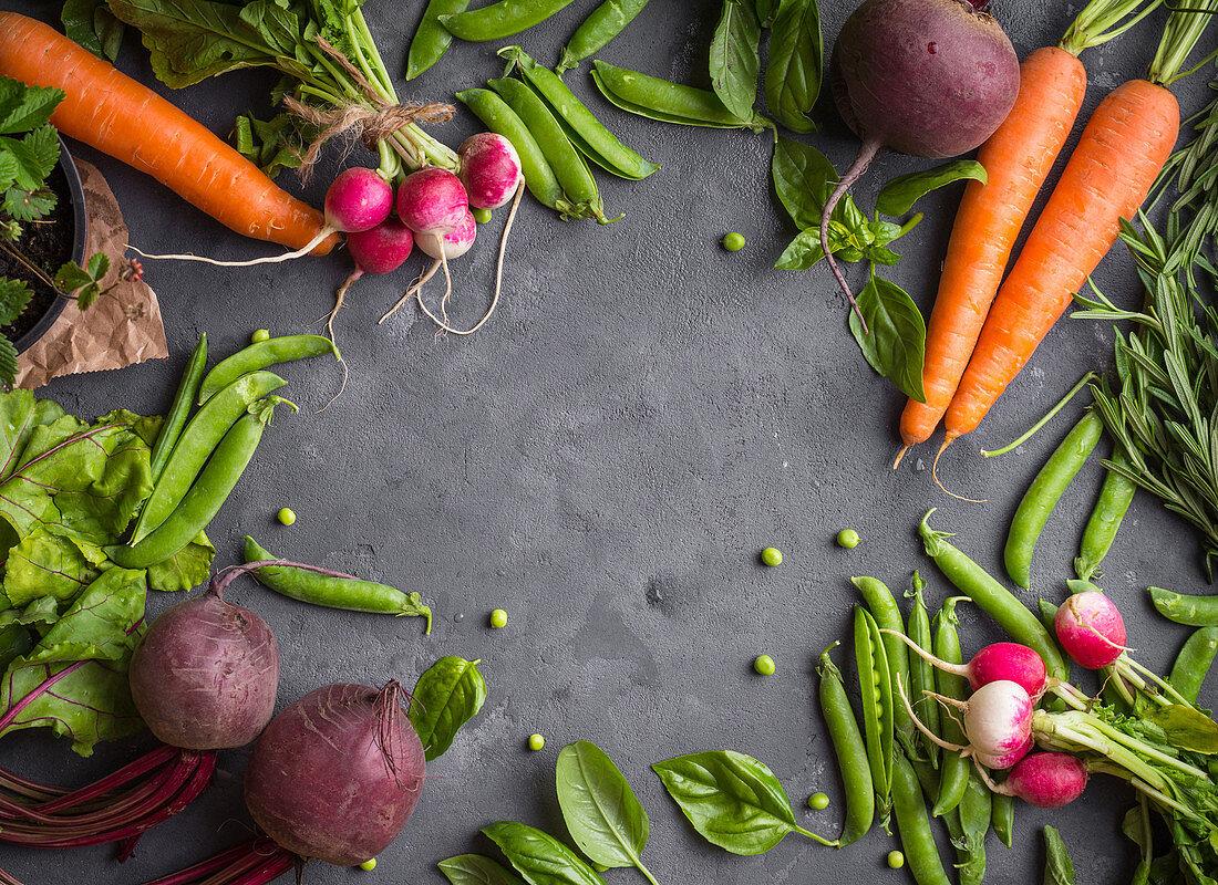 Fresh vegetables on rustic concrete background (Carrot, beet, radish, green pea, herbs)