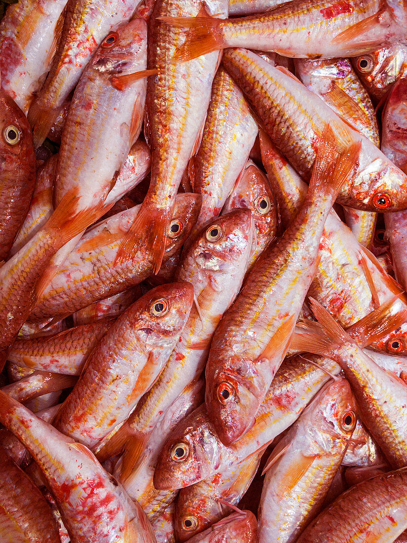 Red mullet at a fish market (full screen)
