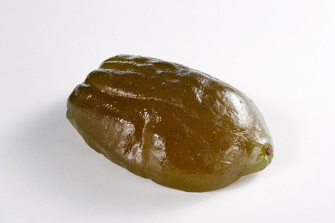Candied green lemon peel