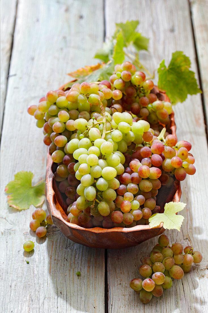 Grapes in a ceramic bowl