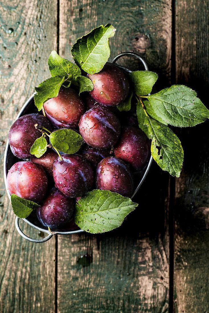Hungarian plums