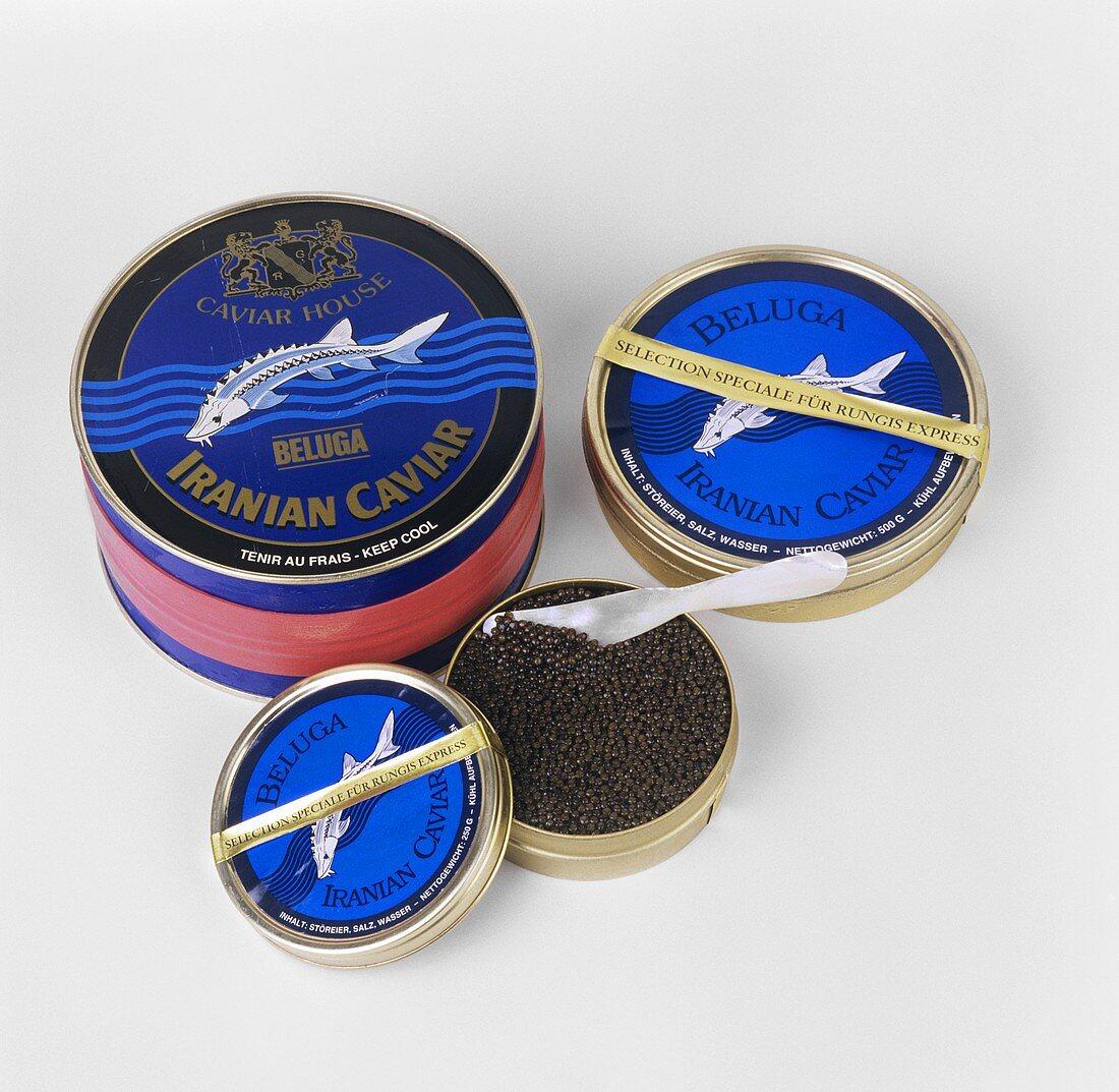 Iranian black Beluga caviar in three different tins