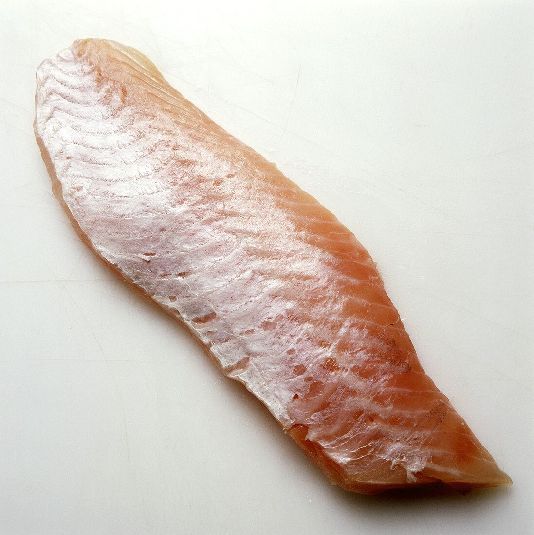 A Red Perch Fillet