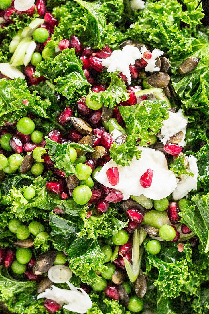 Winter salad with green kale, pomegranate seeds, peas, mozzarella and pumpkin seeds