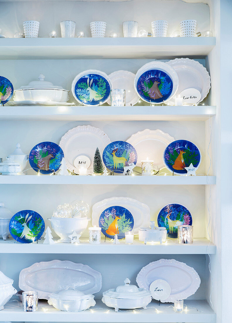White china and blue decorative plates with winter motifs on shelves decorated with fairy lights