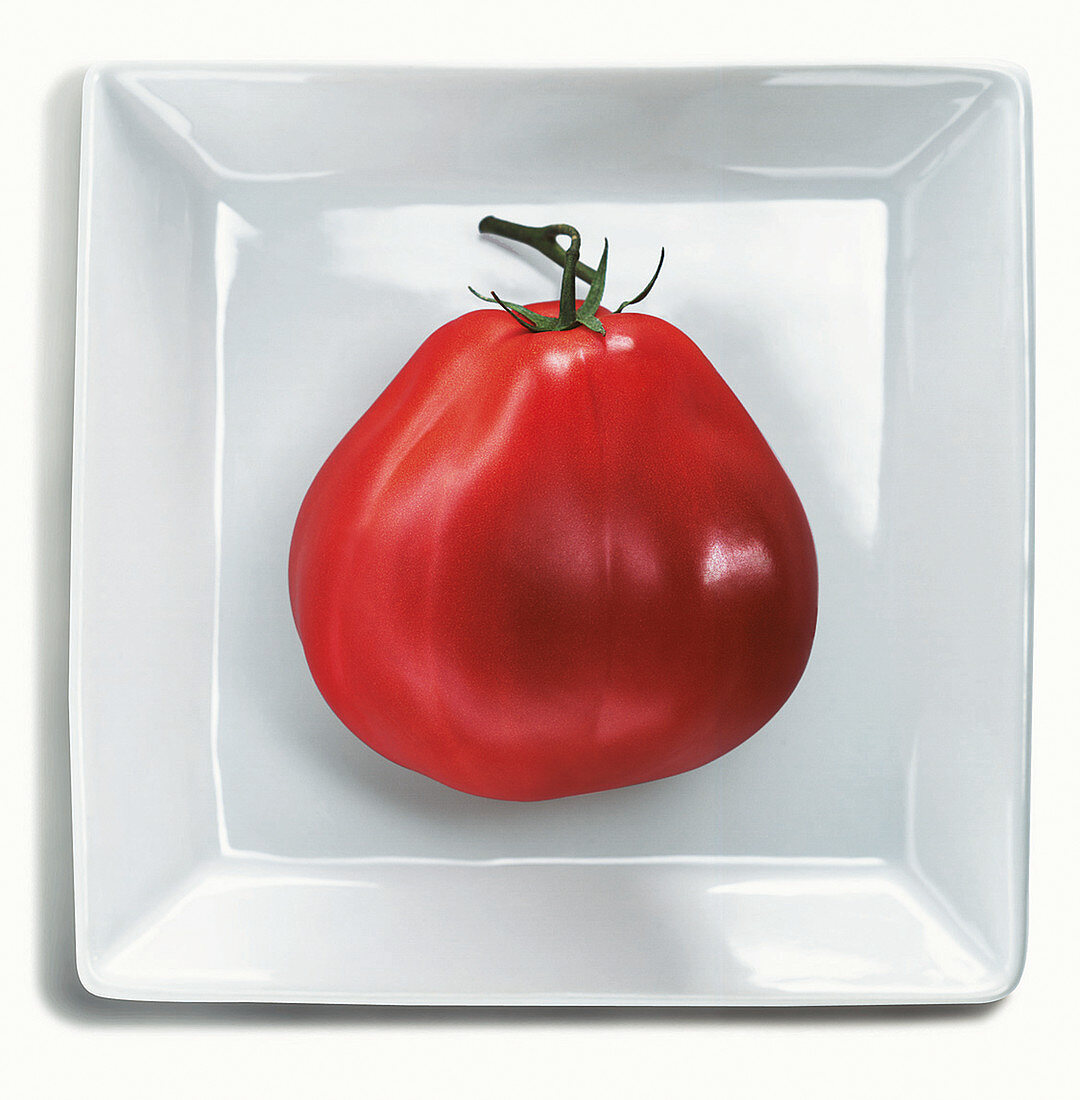 A beef tomato on a square plate