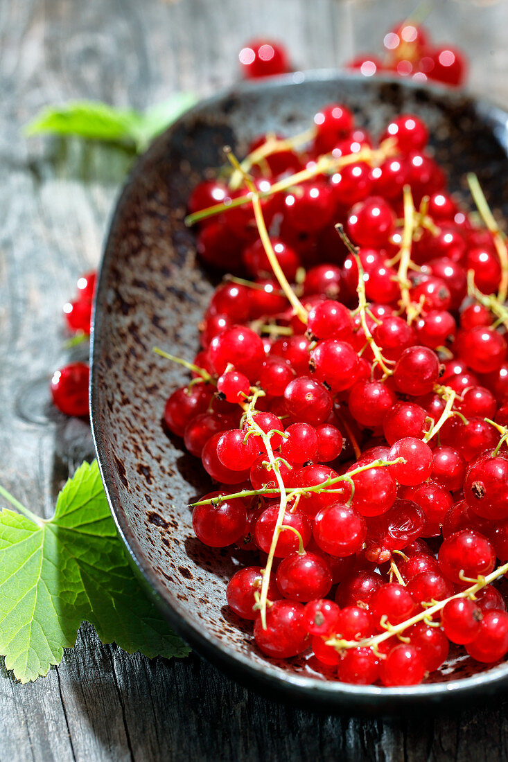 Fresh red currants on a ceramic plate
