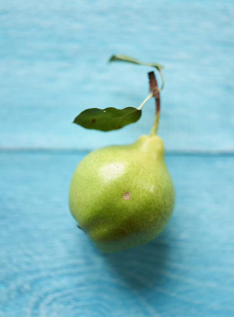 A butter pear on a blue wooden background