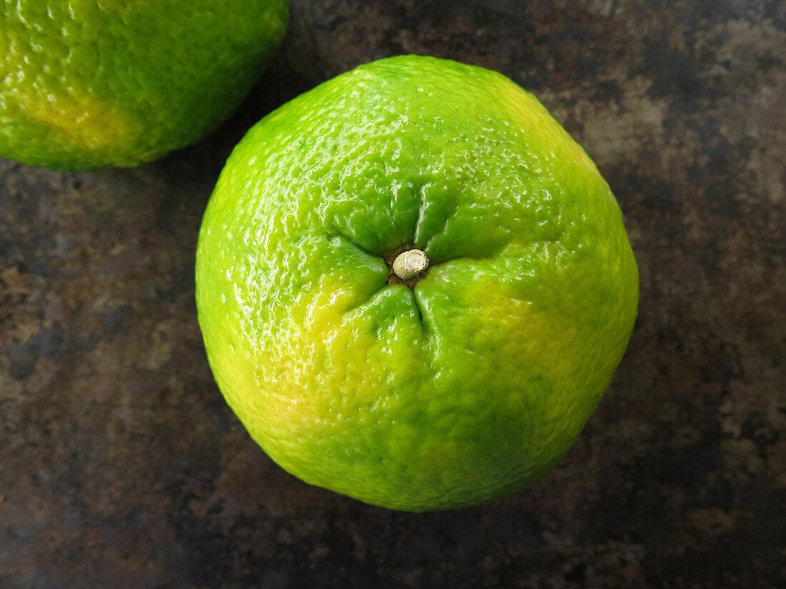 An ugli fruit on a dark surface