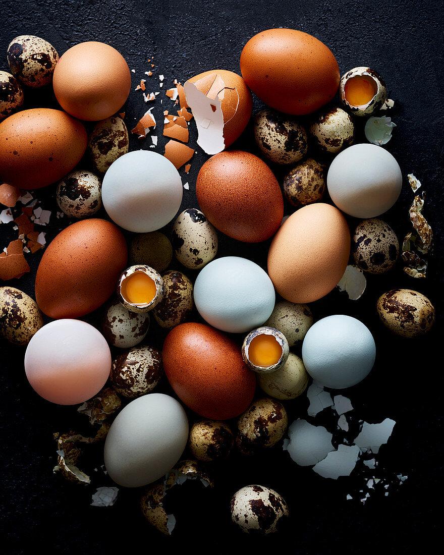 Verschiedene frische Eier