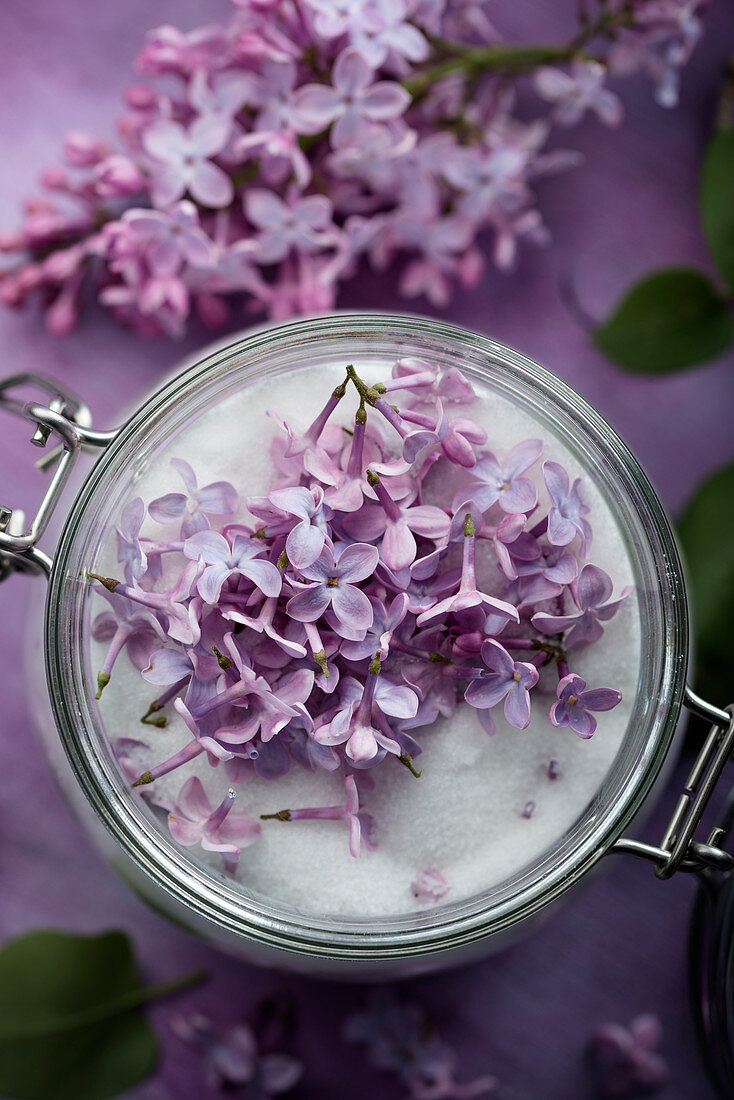 Sugar infused with lilac flowers