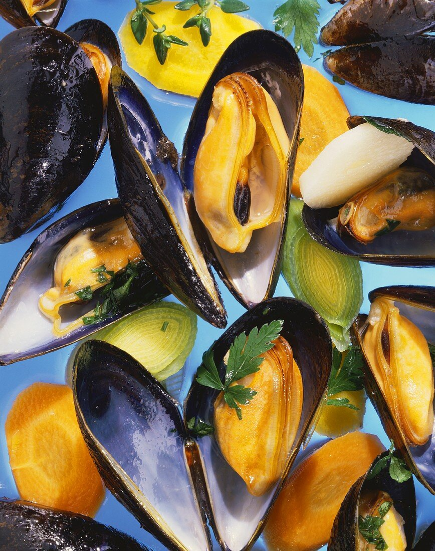 Mussels in cooking liquor (on blue background)