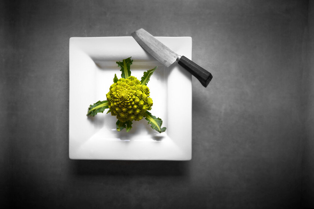 Fresh Romanesco with a knife on a porcelain plate