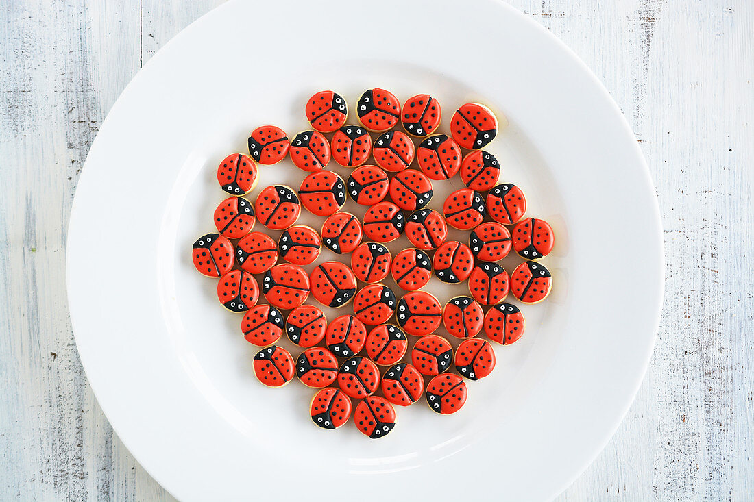 Lots of little ladybird cookies on a plate