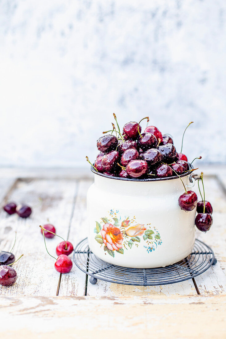 Fresh cherries in enamel bucket with water droops.