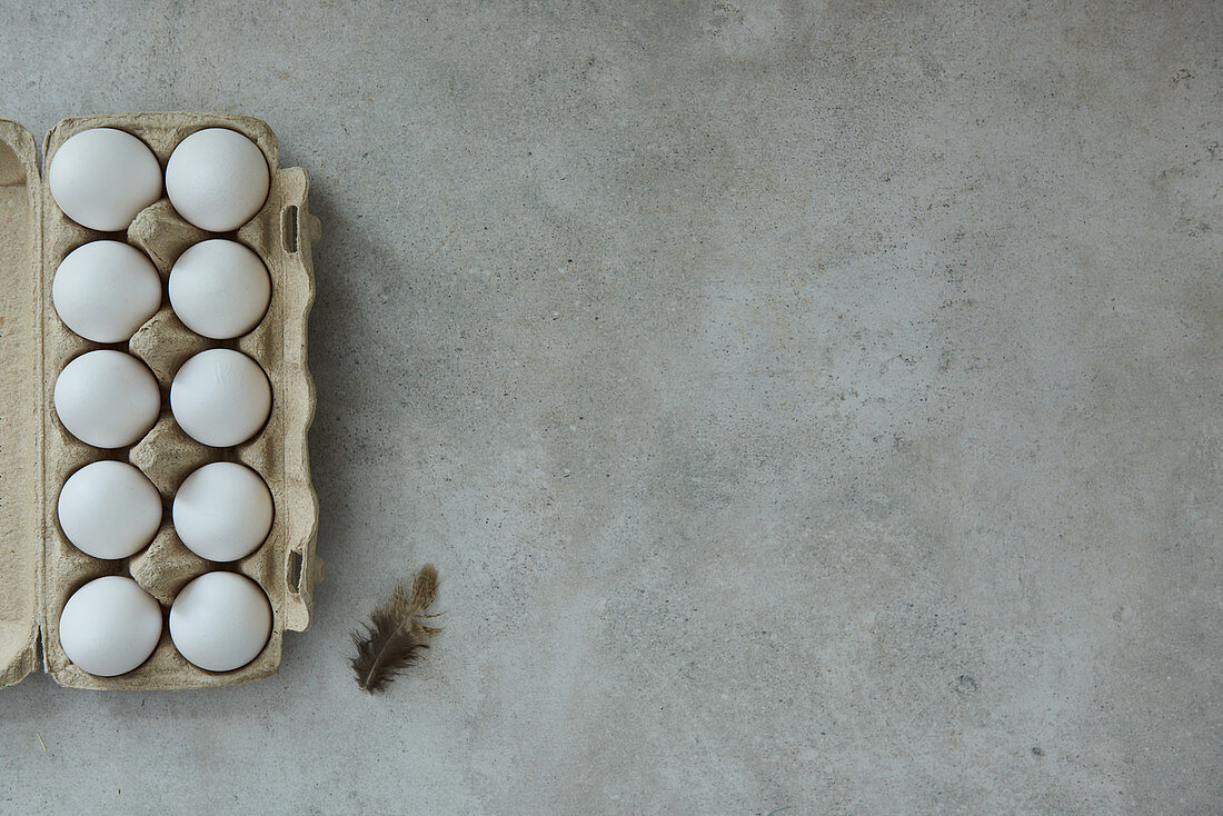 Eggs in an egg container and a feather on a gray background