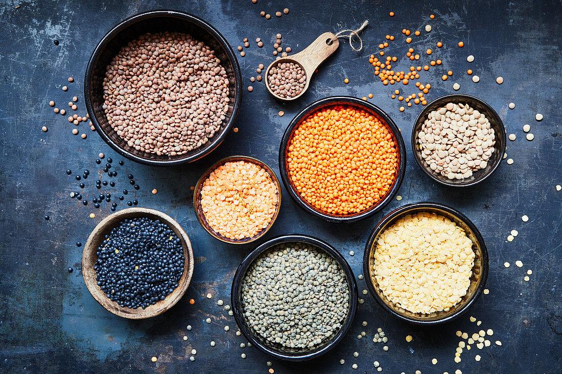 Different varieties of lentils
