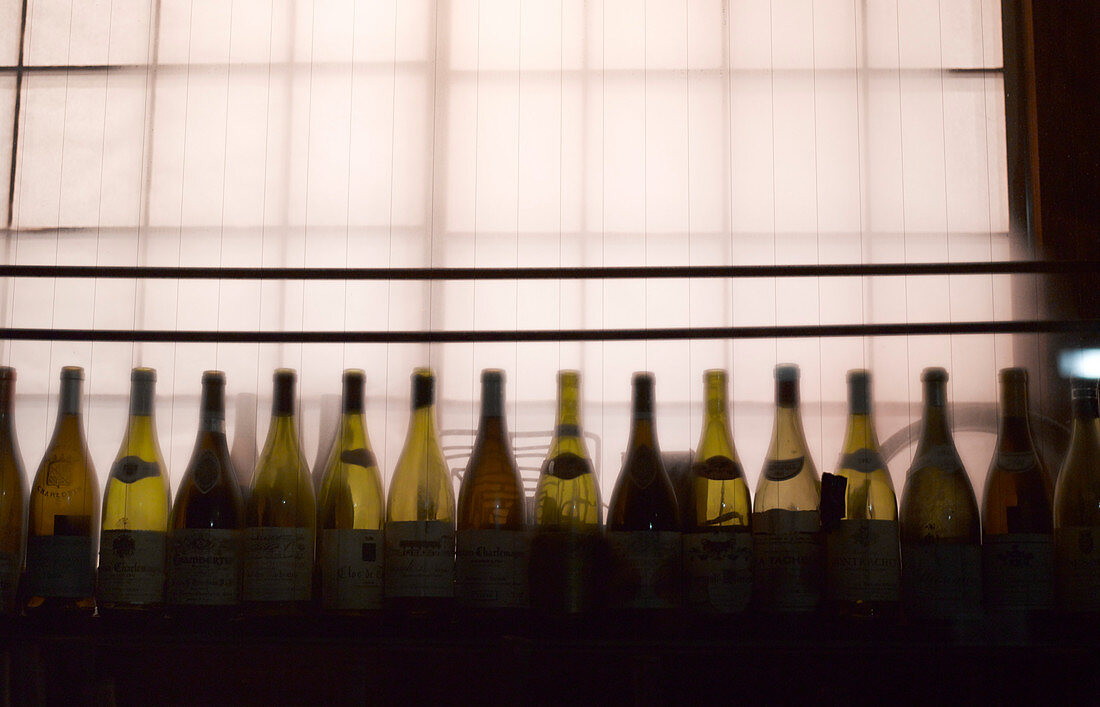 Row of Wine Bottles, Gion District, Kyoto, Japan