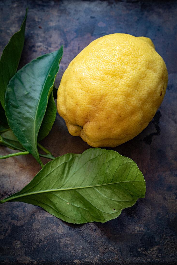 A lemon and lemon leaves