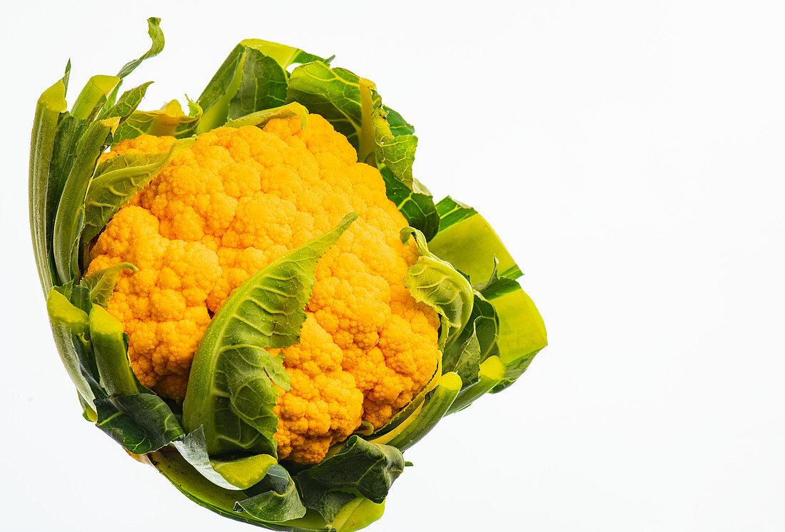 A yellow cauliflower