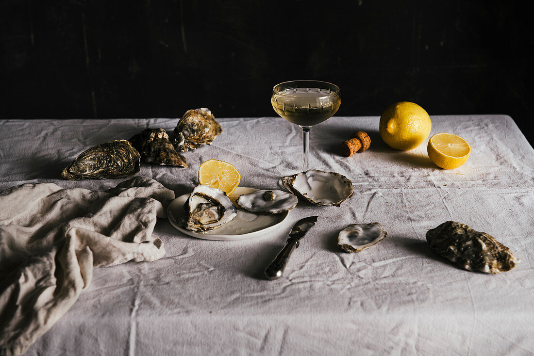 Still Life with Oyters and Lemon