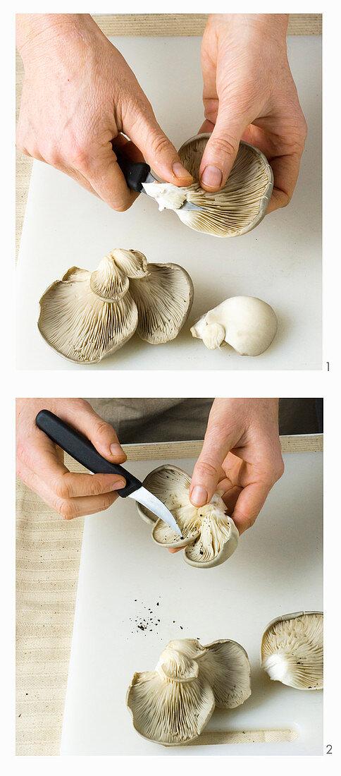 Oyster mushrooms being prepared