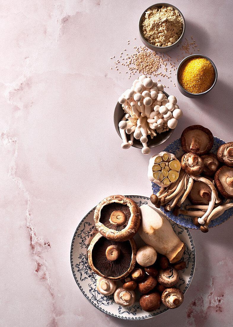Mushroom variety