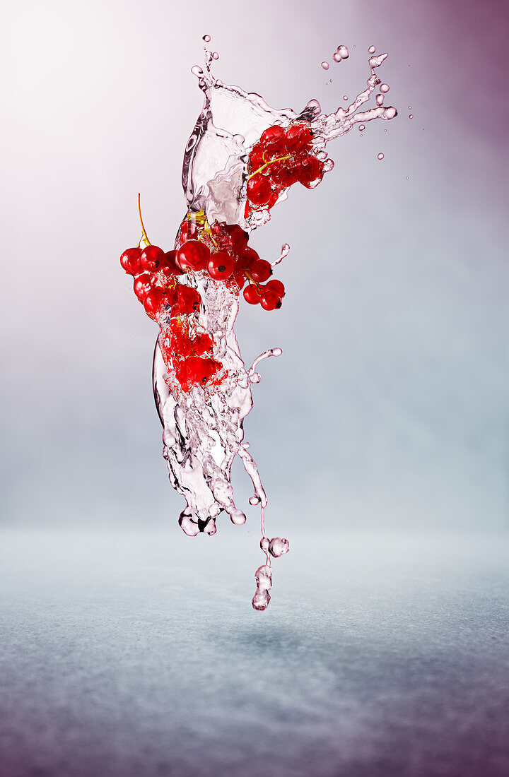Redcurrants and splash of water
