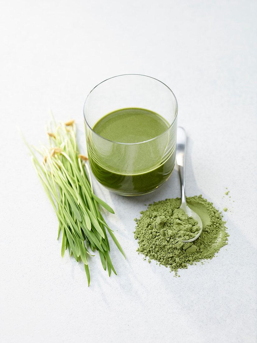 Wheatgrass, wheatgrass juice and wheatgrass powder