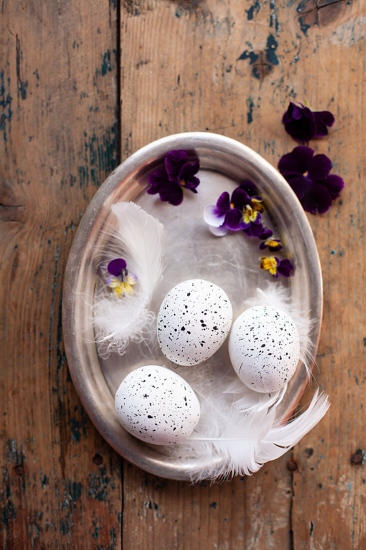 Speckled white eggs with feathers and horned violet flowers on a tray
