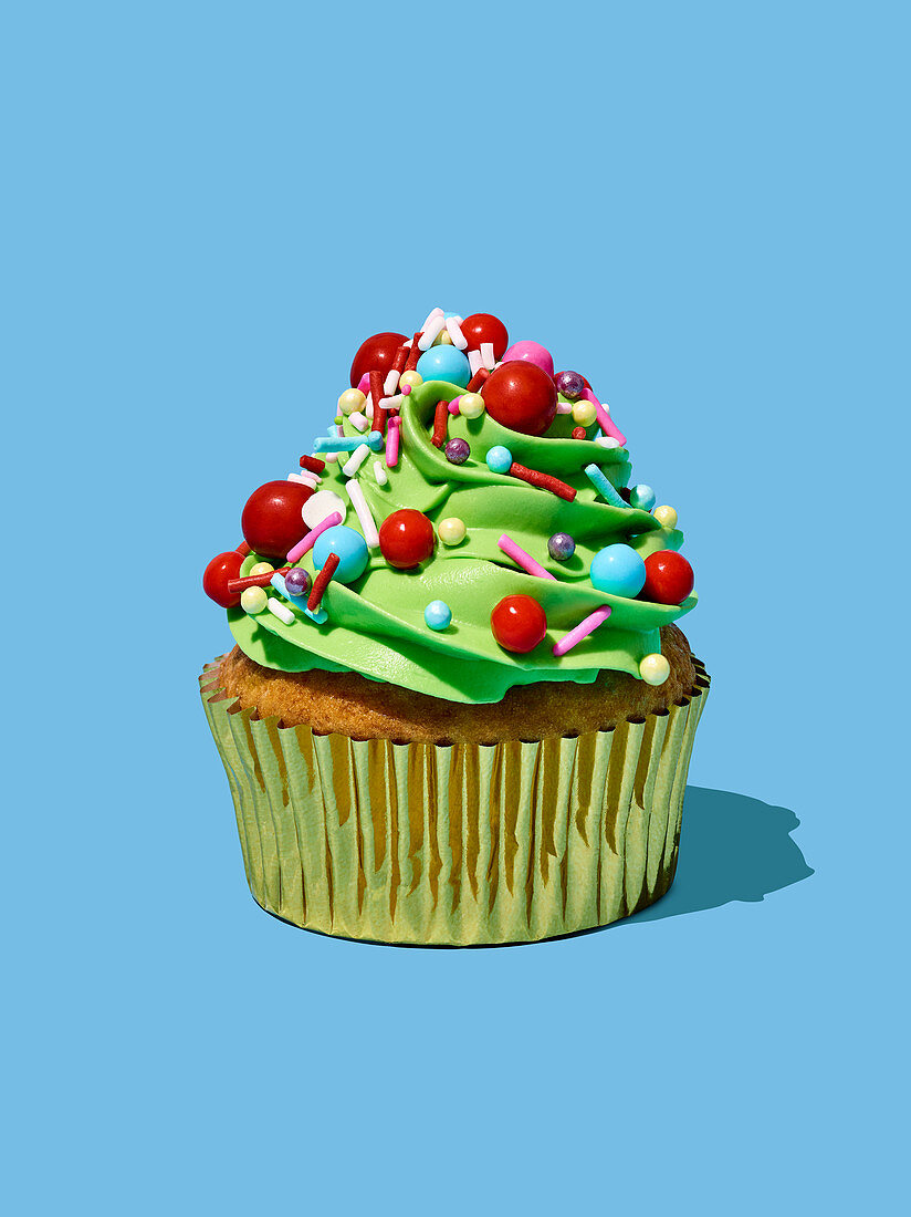 Cupcake with Christmas frosting