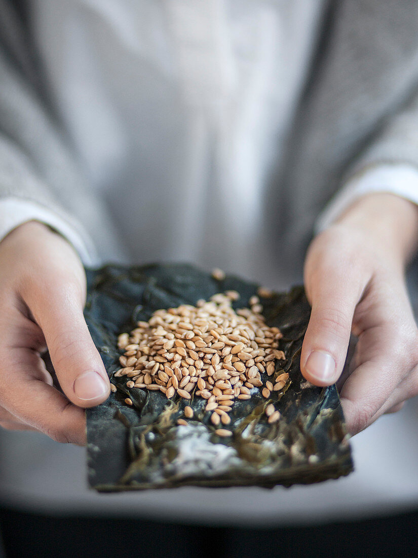 Nori leaves and spelled grains