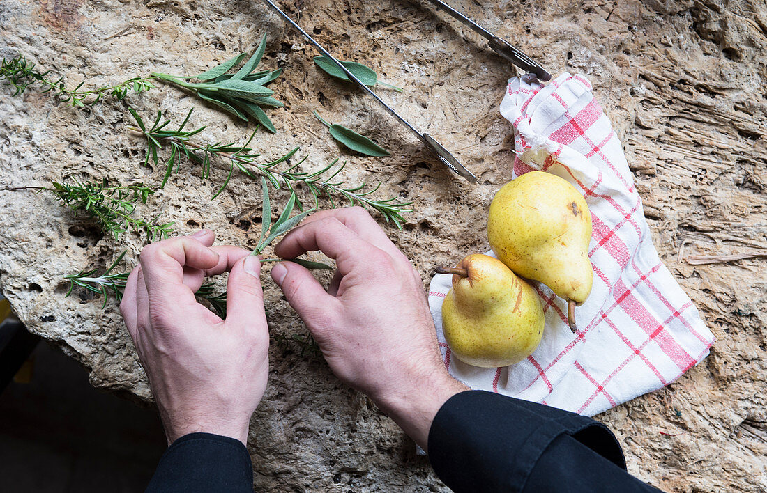 Hands displaying fresh herb leaves on a stone background next to two yellow pears