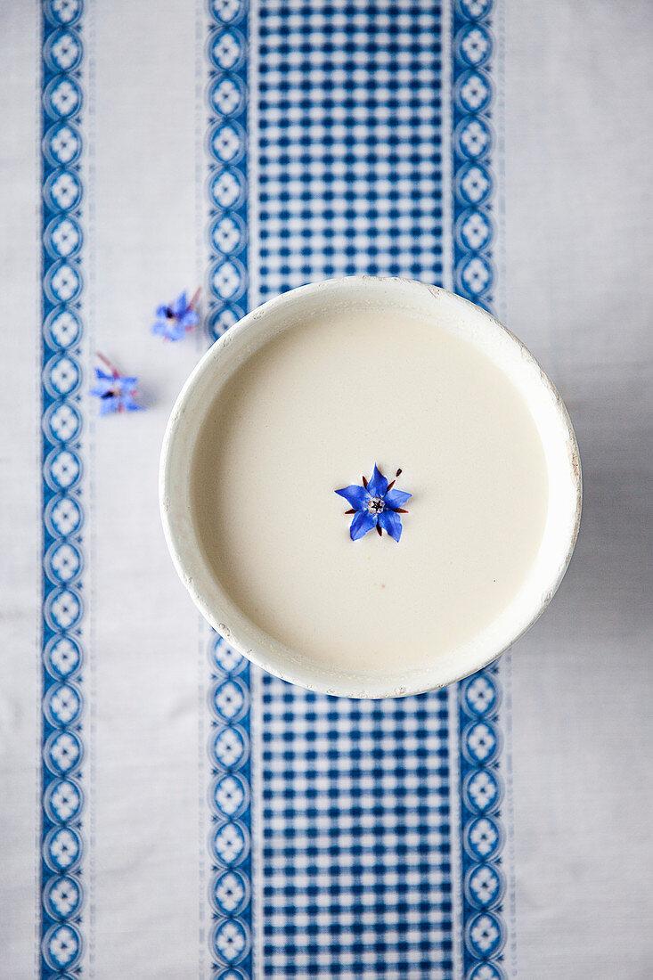 Ajo blanco (pikante, cremige Mandelsuppe, Alpujarra, Spanien)