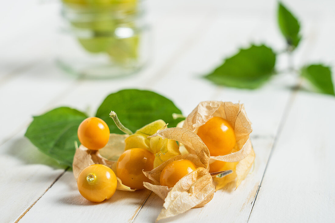 Physalis fruit (Physalis peruviana)