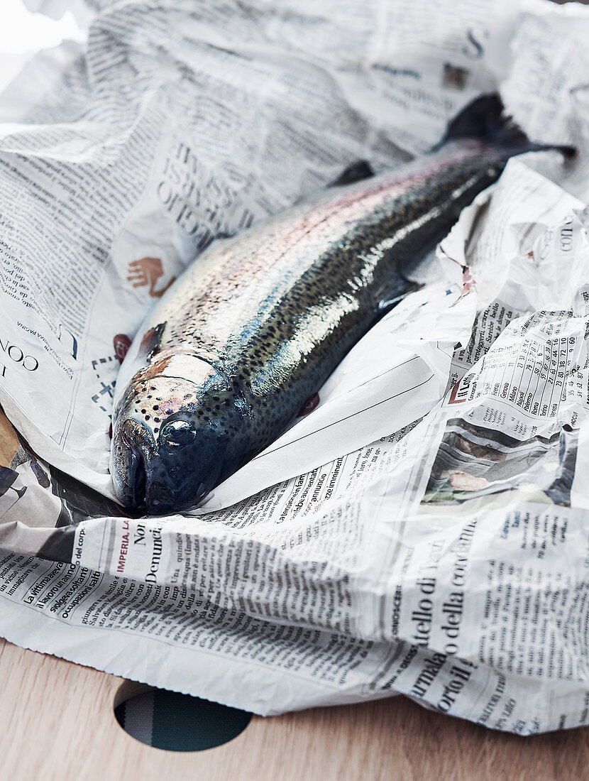 Trout in newspaper
