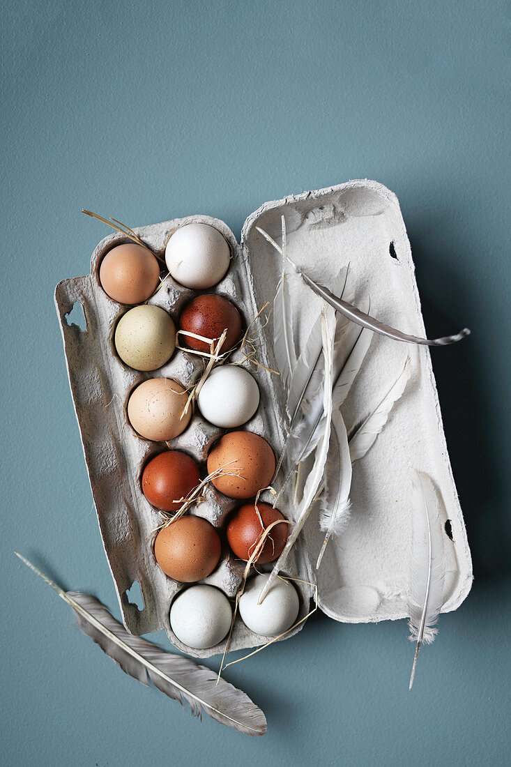 White and brown eggs in an egg box with feathers