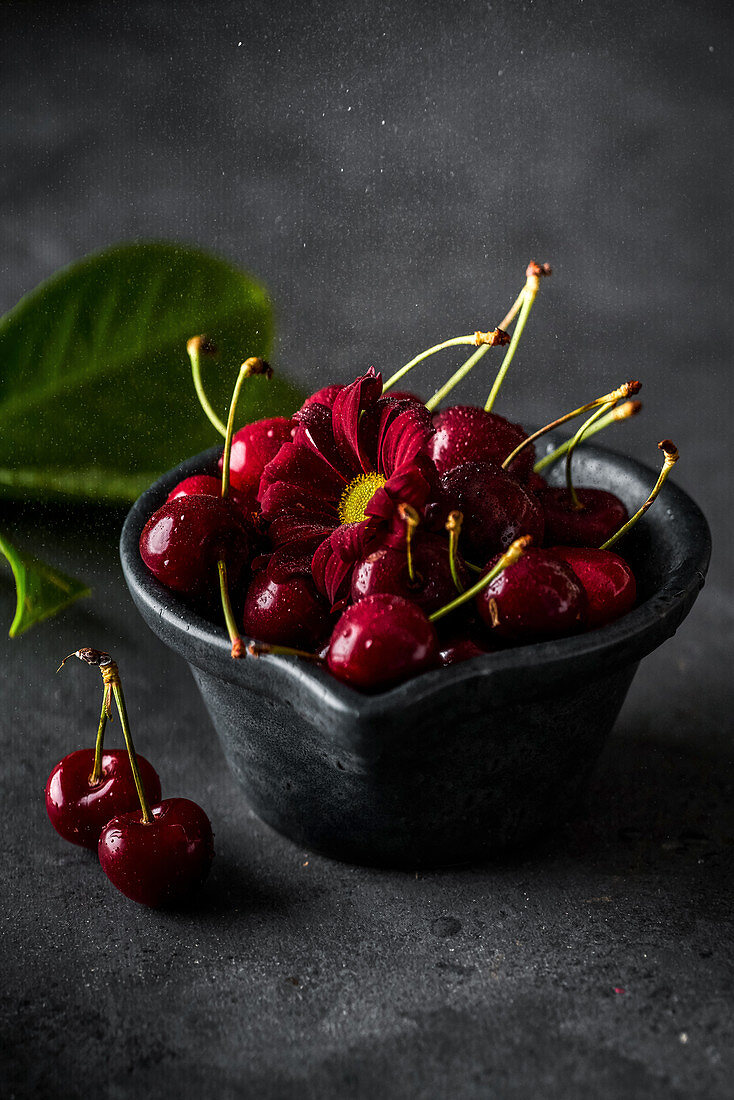 Ripe cherries with red flower in bowl at grey table indoors