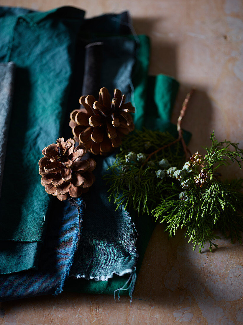 Conifer branch and dried pine cones