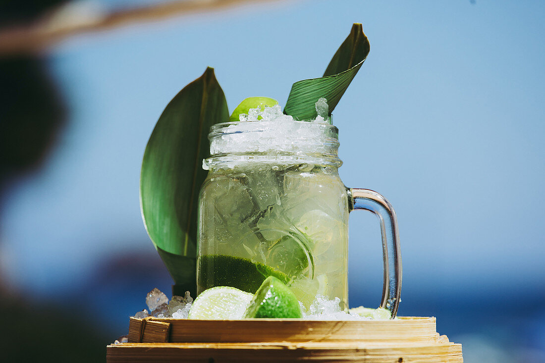 Glass mug with refreshing cold cocktail with fresh lime and green leaves composed against blurred background